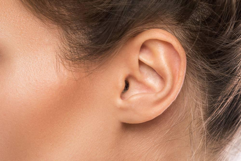 Das Ohr - ein empfindliches Organ