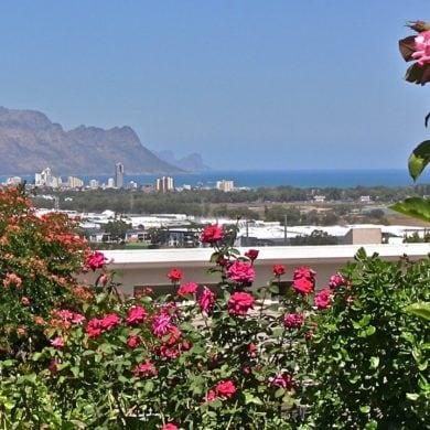 Wie lebt es sich als Rentner in Südafrika #namibia #afrika #auswandern #urlaub