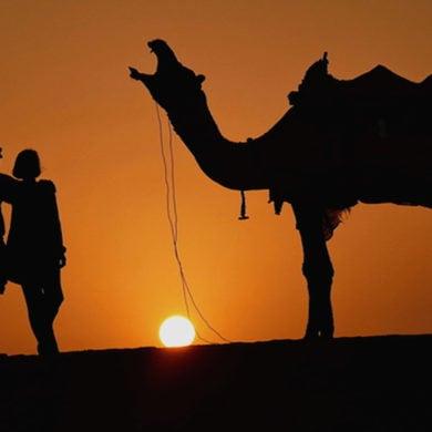 Wüstentour mit Kamel Quelle: Aras Orhon