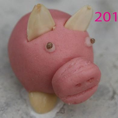 Was erwartet mich 2016? Hoffentlich viel Schwein