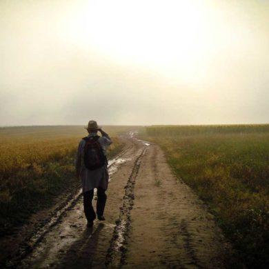 Ein Spaziergang vertreibt die Winterdepression Quelle: pixabay